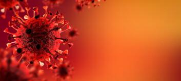 20 av 22 tilfeller bekreftet:  – Delta-viruset er nå dominerende i Drammen