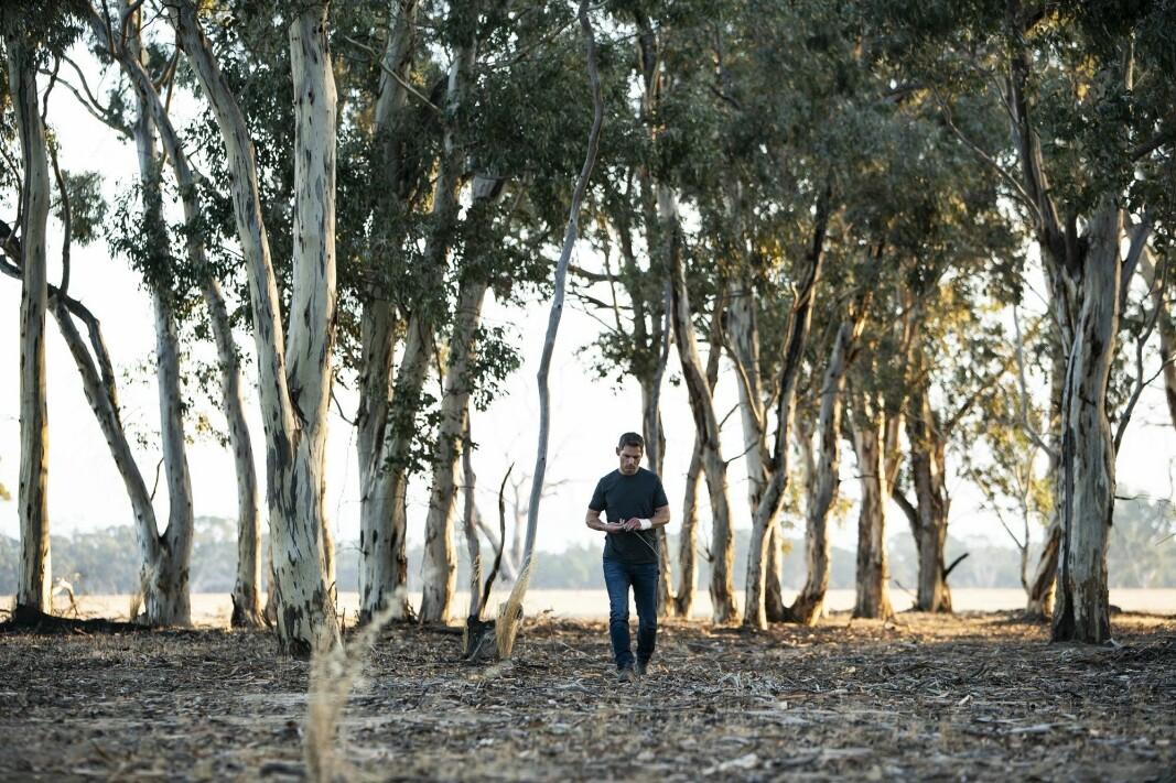 TØRKE: Aaron Falk (Eric Bana) følger opp et tilsynelatende tynt spor.