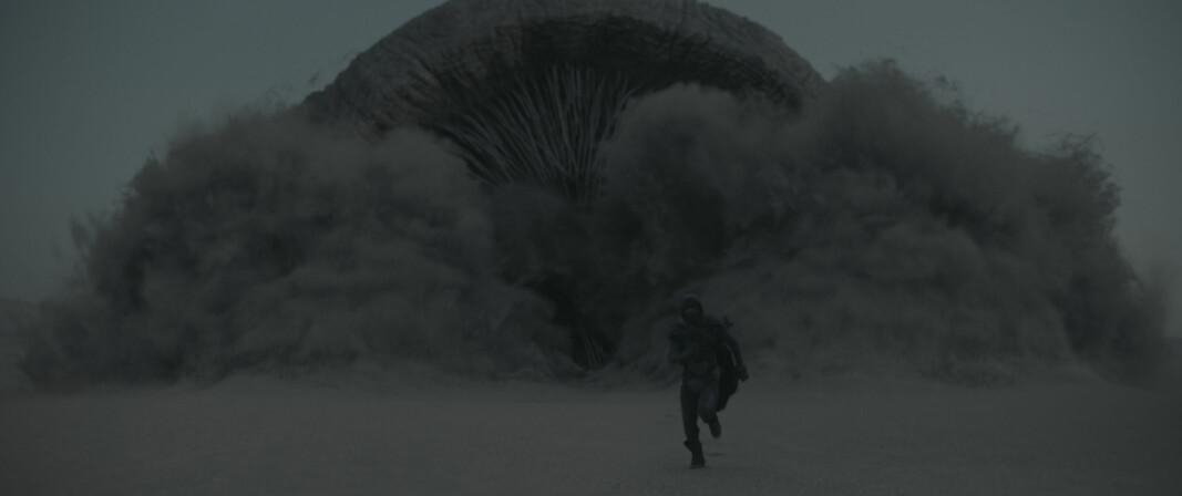 SANDSLETTENES MONSTER: Når kjempe-sandormen angriper er det bare å løpe